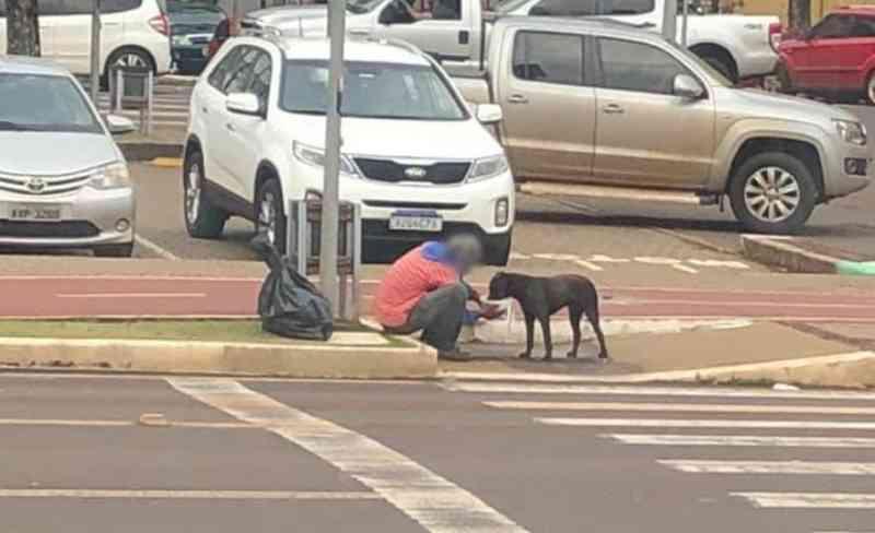 Solidariedade: morador de rua ganha marmita e a divide com cachorro