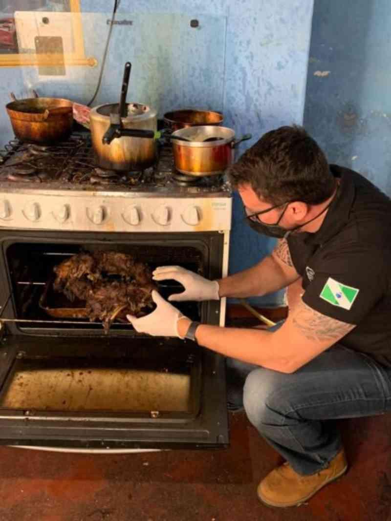 Homem que assou cachorro em Curitiba (PR) confessa que também matou e bebeu sangue de pássaro