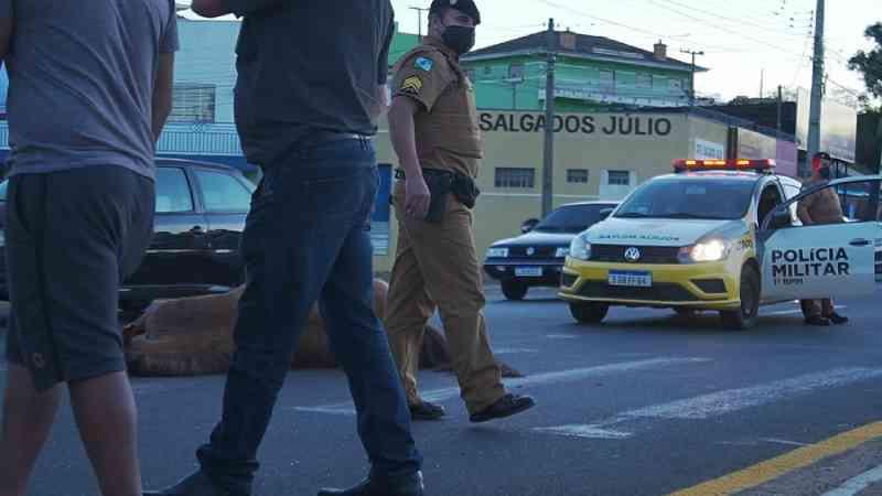 Cavalo morre após ser atropelado na Ronda, em Ponta Grossa, PR