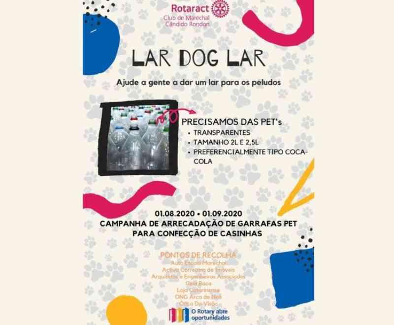 Rotaract Marechal realiza recolha de garrafas PET para confecção de abrigos para animais em situação de abandono