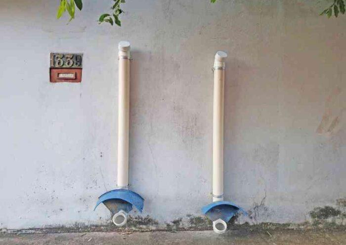 Vizinhos criam 'aulimentadores' para animais de rua em Porto Velho, RO