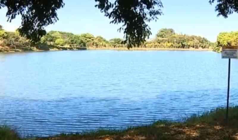 Prefeitura de Charqueada (SP) estuda remoção de jacarés de lago após morte de animal