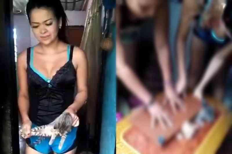 Crueldade: mulheres matam brutalmente dois gatos e postam nas redes sociais; cena fortíssima