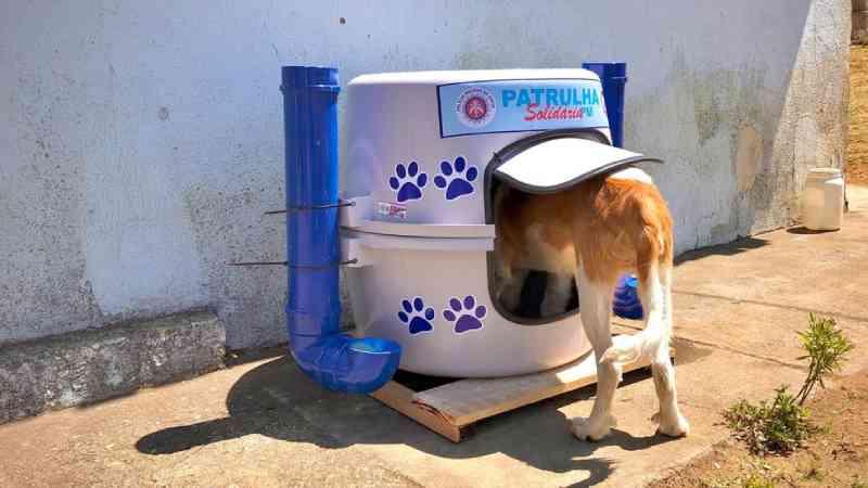 Abrigos para cachorros de rua são instalados em bairros de Vitória da Conquista, BA