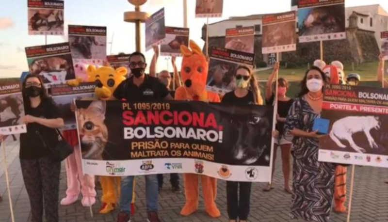 Entidades da proteção animal da Bahia realizam ato público na Bahia para pressionar Bolsonaro
