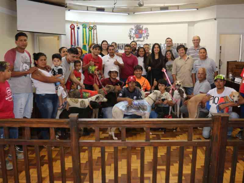 Criadores querem a liberação da cruel corrida de galgos no Brasil. E financiada com dinheiro público