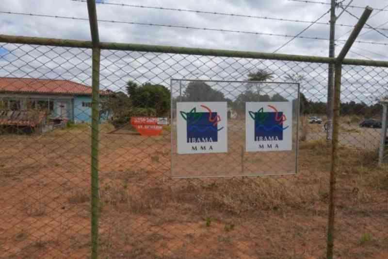 MPF questiona Ibama após servidores do DF denunciarem maus-tratos a animais