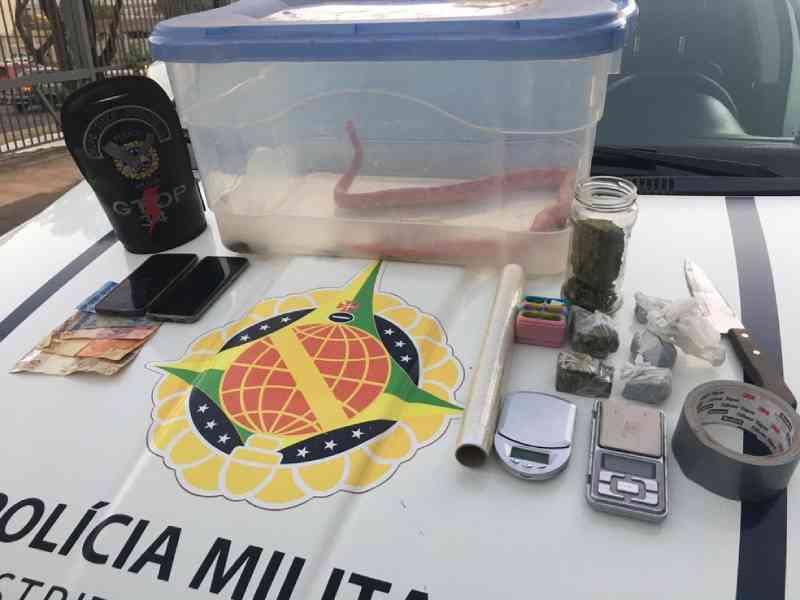 Casal é preso com drogas e cobra exótica criada ilegalmente no DF