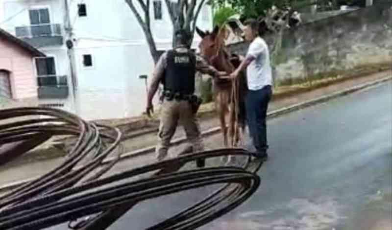 Charreteiro foi preso em Bom Sucesso (MG) acusado de maltratar burro