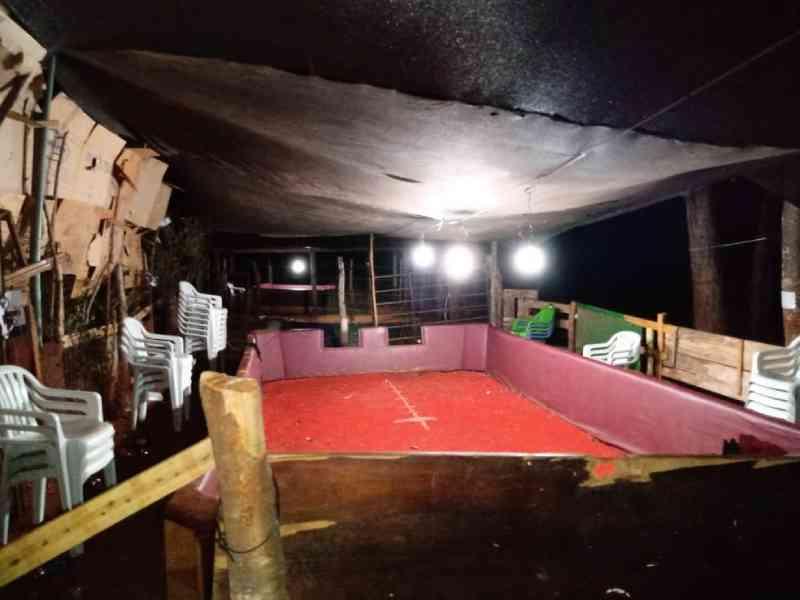 Casal é preso por promover rinha de galos em Montes Claros, MG