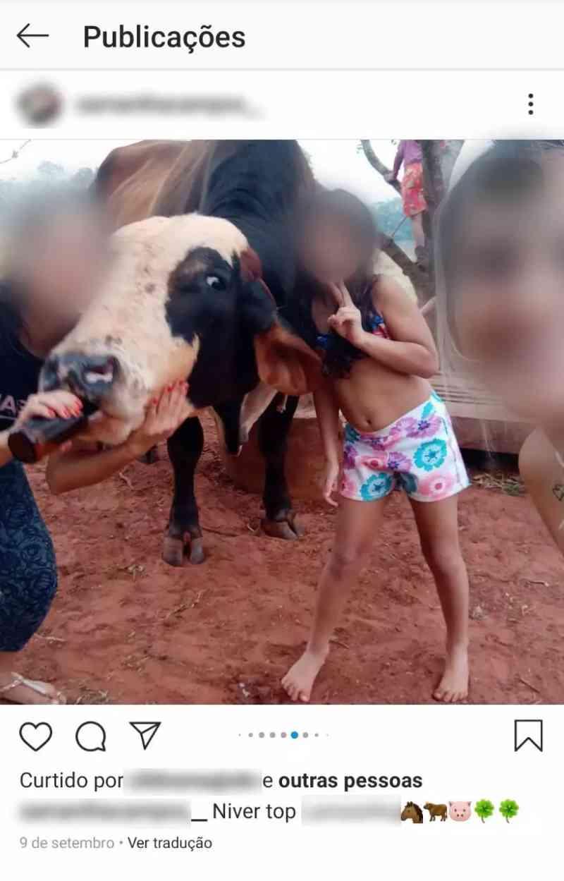 Mulher dá cerveja para vaca amarrada, filma e posta no Instagram