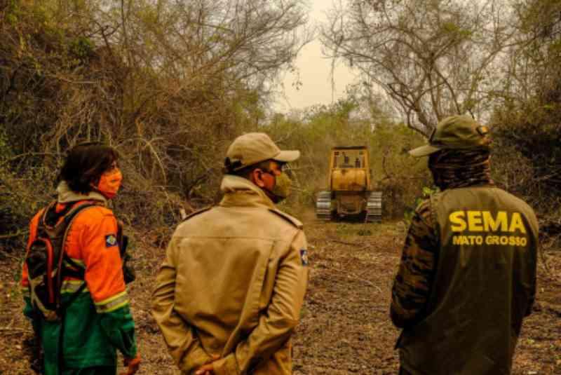 Bombeiros constroem refúgio para animais silvestres no Pantanal