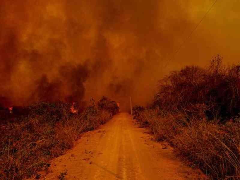 Fogo destrói 85% de parque conhecido pelo turismo das onças no MT