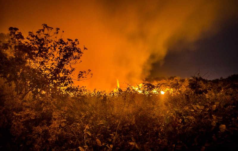 Em muitas situações, bombeiros e brigadistas apenas observam o fogo, alastrado por áreas grandes demais para ser controlado (Foto: João Paulo Guimarães/Repórter Brasil)