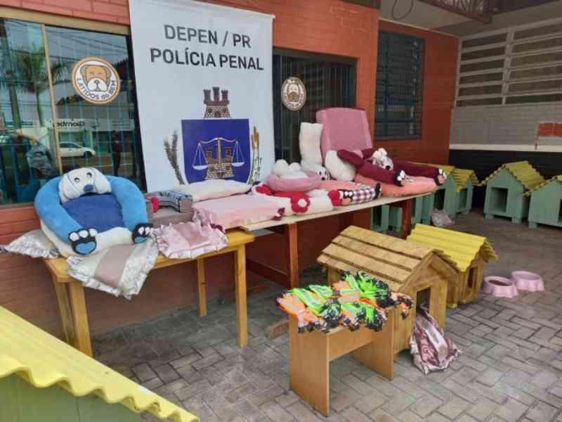 Presos e presas da Cadeia Pública de Toledo (PR) produzem materiais destinados a animais abandonados