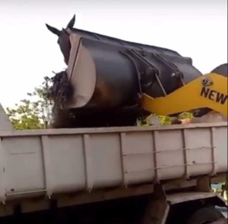 Prefeitura de Barra do Piraí vai apurar procedimento — Foto: Reprodução