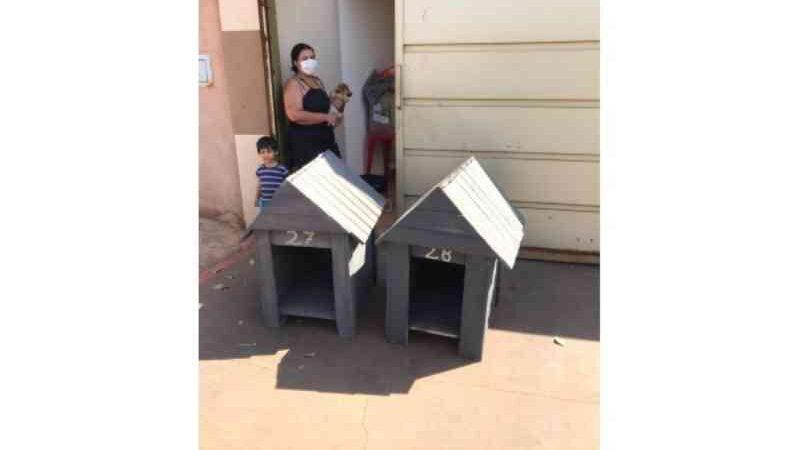 Dezoito novas casinhas de cachorro são instaladas na cidade de Barretos, SP