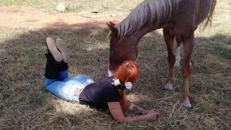 Animais abandonados e vítimas de maus-tratos são ajudados por atriz