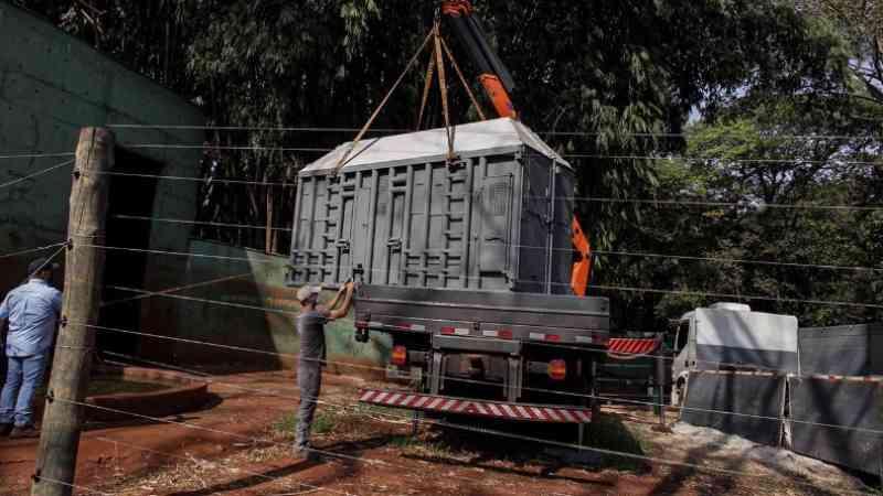 Caixa que irá transportar elefanta Bambi é colocada em recinto; fotos