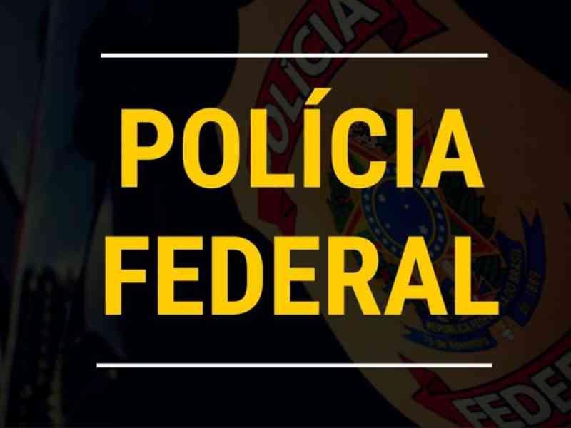 PF deflagra Operação Marfim, para investigar comércio ilegal de obras feitas com marfim em São Paulo