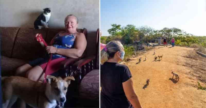 Agricultora paraibana oferece lar temporário para animais resgatados: 'Eles me ajudam a ser melhor'