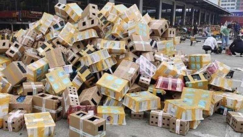 Animais de estimação mortos foram encontrados na cidade de Luohe, na China. Foto: Divulgação/Wutuobang