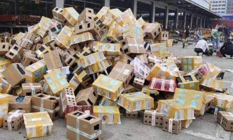 Cinco mil animais 'de estimação' são encontrados mortos em caixas de papelão na China