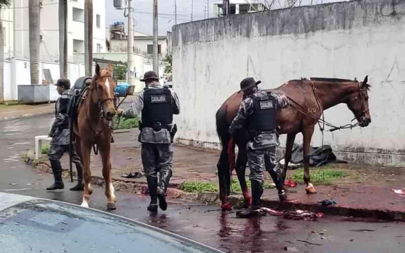 Égua da PM morre e policial se fere durante perseguição a casal suspeito de furtos, em Goiânia, GO