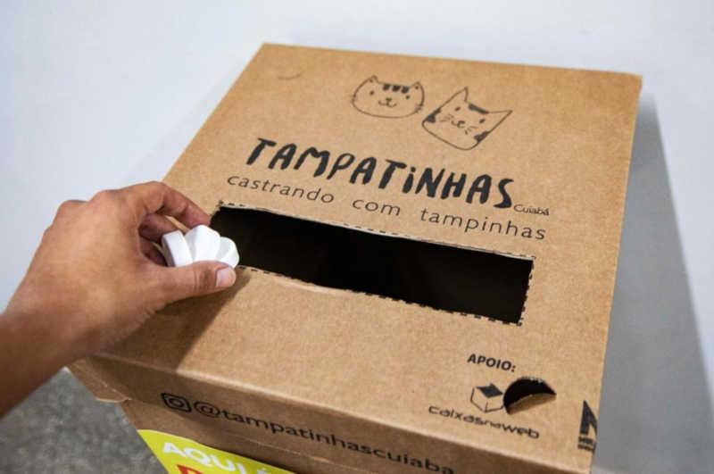 Projeto recolhe tampinhas plásticas para vender e custear castrações de animais de rua na Grande Cuiabá, no MT