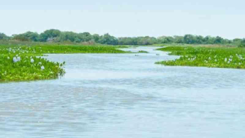 Fogo sem controle no Pantanal ameaça reserva refúgio de animais em MT