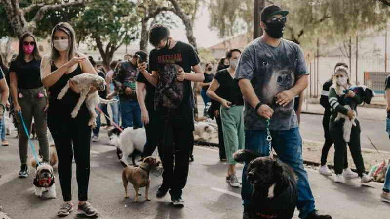 Manifestantes protestam por morte de voluntária que foi agredida por vizinho que maltratava cachorro, em Campo Mourão, PR