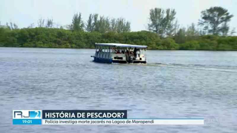 Polícia investiga denúncia de caça de jacarés na Lagoa de Marapendi, na Barra da Tijuca, no Rio