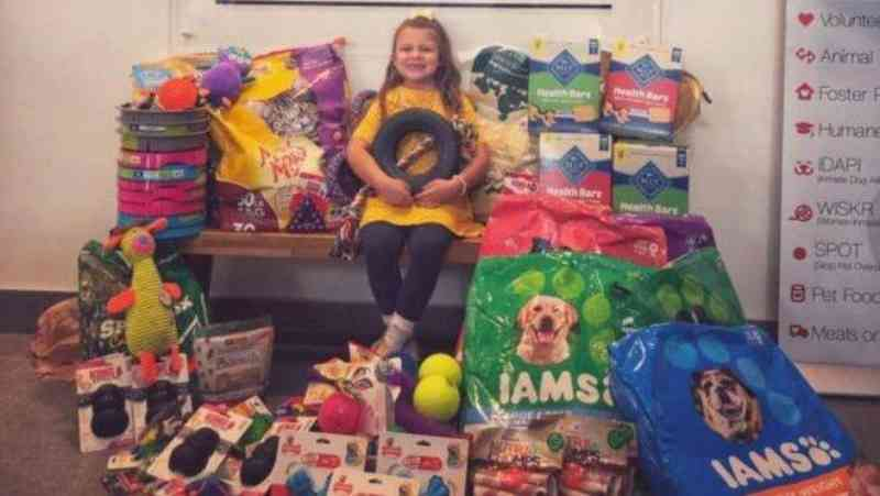 Menina de 5 anos vende pinturas na internet para ajudar lar para animais de sua cidade