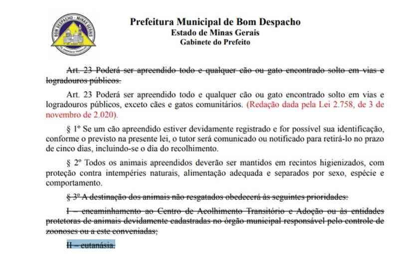 Termo eutanásia aparece em lei para controle de animais abandonados em Bom Despacho (MG) e causa polêmica na internet