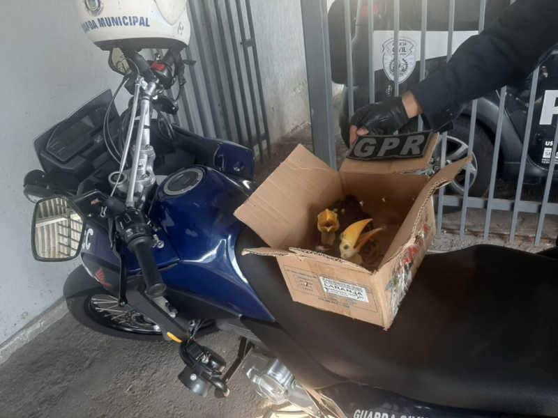 Três homens foram detidos após abordagem — Foto: Divulgação/Guarda Municipal de Contagem