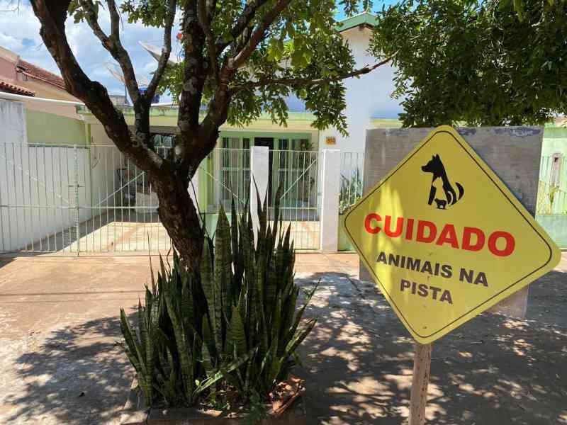 Moradores improvisam placa para evitar atropelamento de animais e acidentes em Aquidauana, MS