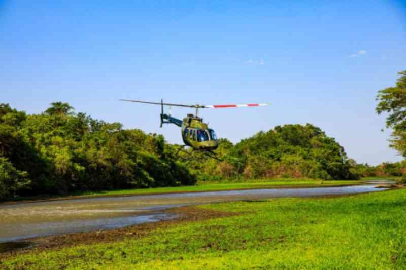 Estrutura de atendimento a animais silvestres será mantida no Pantanal