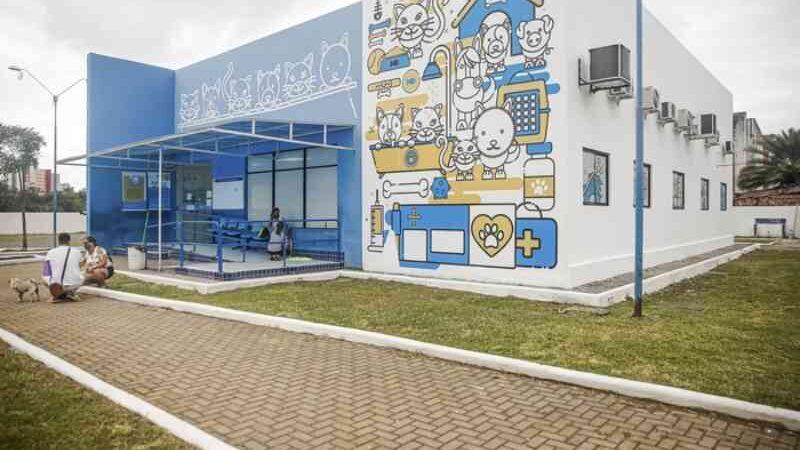 Hospital Veterinário do Recife (PE) passa a atender animais silvestres