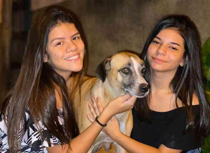 Jovens realizam rifa para custear castração de cadelas em Picos, PI