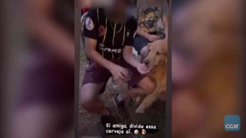 Engenheiro agrônomo de Cascavel (PR) é investigado após dar cerveja para cachorro