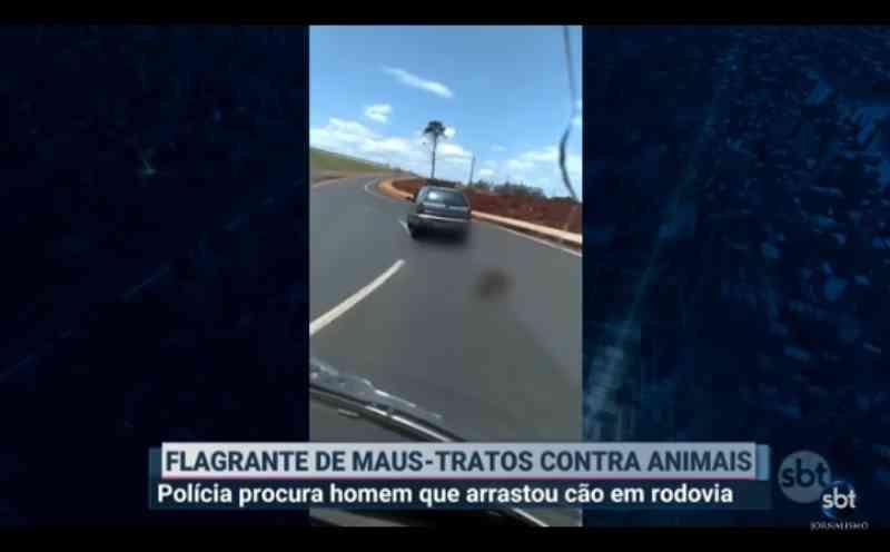 Vídeo: cão é arrastado por carro em rodovia de Londrina, PR