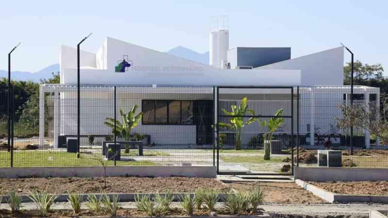 Hospital Veterinário de Resende (RJ) atende mais de oito mil animais no primeiro trimestre