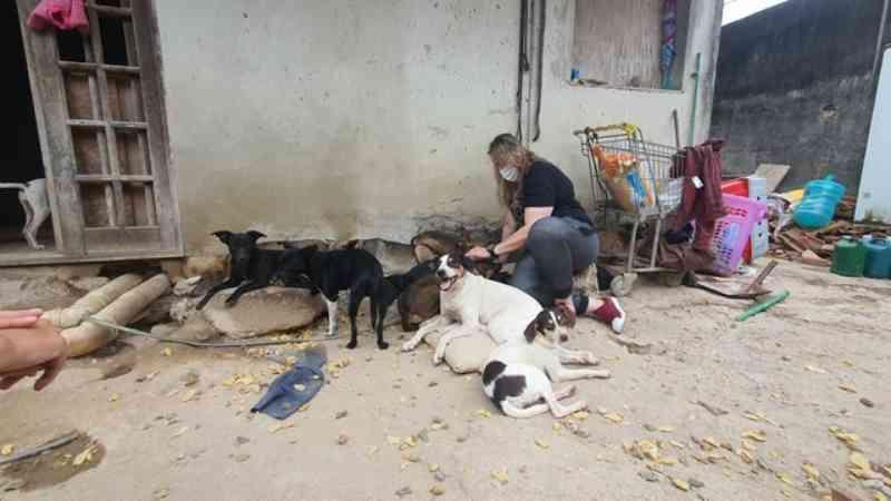 Polícia investiga morte de cuidadora de animais em Vargem Grande, na zona oeste do Rio