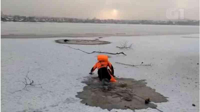 Socorrista salva cachorro que caiu em lago congelado na Rússia; veja vídeo