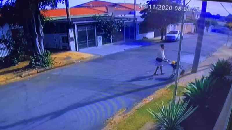Mulher abandona seis filhotes de cachorro em rua de Campinas, SP