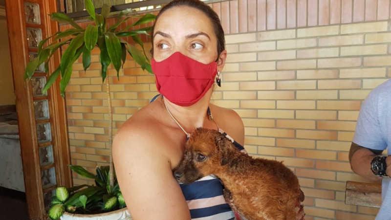 Cadela é queimada e abandonada para morrer no Selmi Dei, zona norte de Araraquara, SP