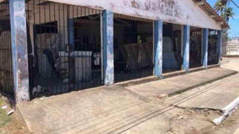 Moradores denunciam maus-tratos contra cerca de 20 gatos na Barra Nova, em Marechal Deodoro, AL