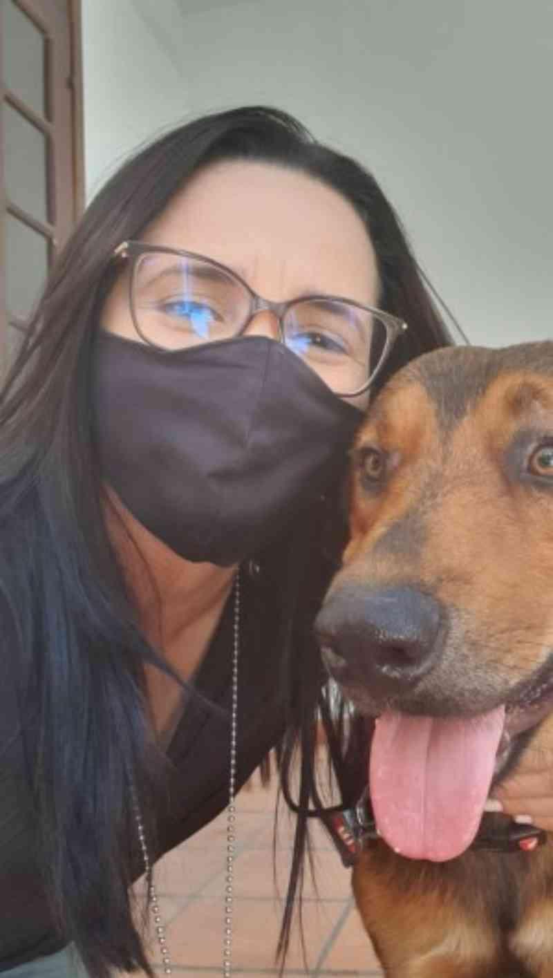 Cachorro é abandonado, alimentado por pessoas em situação de rua e ganha novo lar após resgate