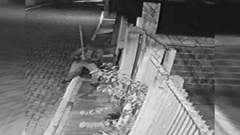 Vídeo: homem mata cachorro com golpes de barra de ferro em condomínio do DF