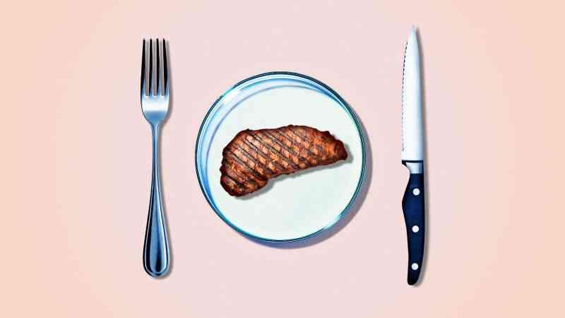 Carne produzida a partir de células sai do laboratório
